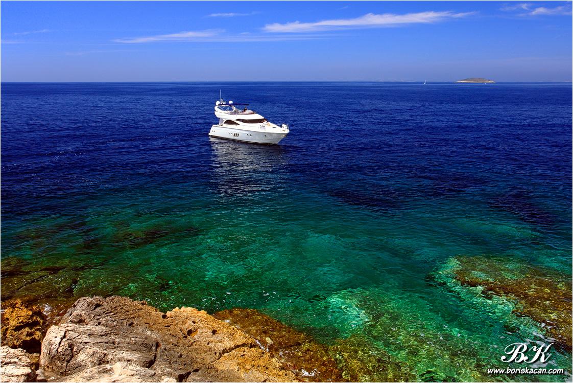 Boris Kačan photography Pictures Gobiidae Adriatic Sea